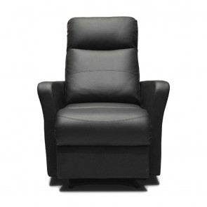 Sleek Recliner